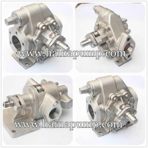 Stainless-steel-palm-oil-pump
