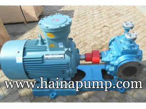 Heat insulating gear pump