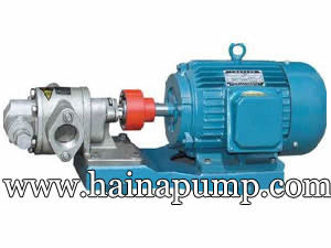 Stainless Steel Gear Pump