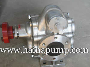 stainless_316_gear_pumps_1inch_2inch_4inch